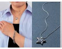幸運をファッションを兼ねたアクセサリーの逸品セーマン・ダイヤレット ペンダント
