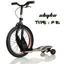 Sbyke-p16-top