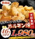 【送料無料】 博多ホルモン焼 300g