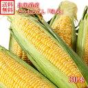 とうもろこし 味来 みらい 30本(L-LLサイズ/約13kg) 北海道産 トウモロコシ BBQ バーベキュー 送料無料 ◆出荷予定:8月中旬-9月中旬