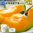 【父の日 メロン】 北海道産 夕張メロン 共選 良品 1.2kg前後x1玉 化粧