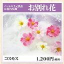 「お別れ花 コスモス」ペットお棺内装飾【火葬 葬儀 造花】