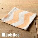 Jubileecoastercs013d