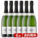 スパークリングワイン スペイン シェニン ブリュット まとめ買い シャンパン