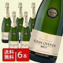 [ワイン6本セット][スペイン カヴァ]スパークリングワイン/シャンパン/WINE/CAVA/ワイン