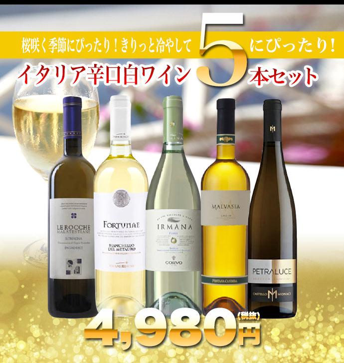 うきうきワインスタッフ厳選!限定イタリア辛口白ワイン5本セット・桜咲く季節にぴったり!きりっと冷やして乾杯!