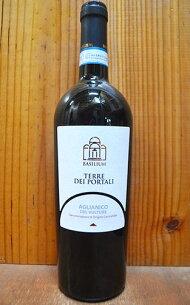 アリアニコ ヴルトゥレ ディオメーデ カンティーナ 赤ワイン アリアニコヴルトゥレギフト
