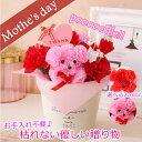送料無料* 期間限定ポイント5倍 母の日 ギフト フラワー プードル 贈り物 プレゼント/メッセージ