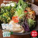 【送料無料】香川県産小麦使用 「細切り」 冷凍讃岐うどんと本造りだしの詰合せ[6人