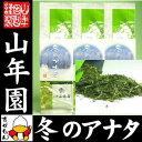 お茶 日本茶 冬のアナタ 100g×3袋セット 送料無料 国...