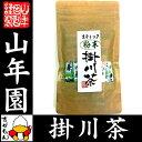 【国産】掛川深蒸し茶 スティックタイプ 粉末 0.8g×15...