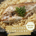 【高級】鯛めしの素 炊き込みご飯の素1尾×3袋セット 高級魚...