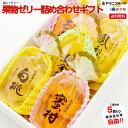 [ご進物用]果物ゼリー詰め合わせギフト 5つ入り 自由に選べる袋入りゼリー(さくらん