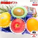 【当店人気NO.2】[ご進物用/秀品] 果物 籠盛ギフト り...