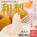 【梨】【訳あり】今が旬!大玉で大満足「和梨」!約5キロで6〜14玉《送料無料》【豊水、秋月、新高、南水など】