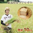 【頑張って送料無料!】新潟県産内山農園のコシヒカリ!こしひかり 精米10kg非コシヒカリBLで昔からあるコシヒカリ本来の
