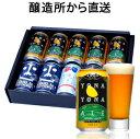 【お中元・夏ギフト】よなよなエール 入 ビール ギフト 4種10缶 飲み比べ 送料無料 金