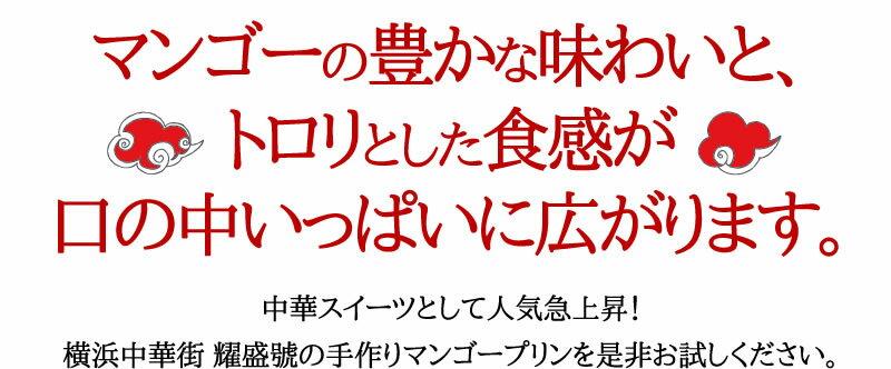 マンゴープリン 100g【冷凍商品】16個セッ...の紹介画像2
