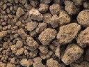 茨城産硬質赤玉土 約4L 小粒