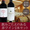 【送料無料】熟成ボルドータイプの赤ワイン2本セット。IKON...