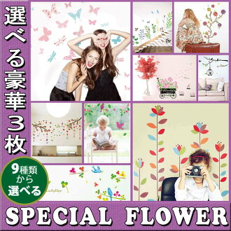 Wall sticker Rakuten ranking 1st place win! 50% Off! 50% Email Yu's tree bird leaves branches birds Nordic cheap Interior stickers wallpaper