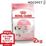 ロイヤルカナン キトン 生後12ヵ月齢までの子猫用(メインクーン は15ヵ月齢まで) 2kg / 安心の正規品 / [ROYAL CANIN FHN 猫用ドライ] JAN:3182