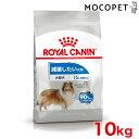 ロイヤルカナン マキシ ライトウェイトケア 10kg / 成犬用 減量したい犬用 生後15ヶ月齢以上 大型犬用 肥満 ダイエット 減量 低カロリー高タンパク質 #w-123757