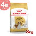 【あす楽】【お得な4個セット】ロイヤルカナン キャバリア 成犬・高齢犬用 3kg×4個 / 安心の正