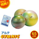 特典 DVD付き ギムニク・バランスボール アルテ 65cm