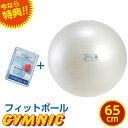 特典 DVD付き ギムニク フィットボール バランスボール パールホワイト 直径 65cm