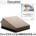 サンテプラス・フレックスクッションMINI&DVDセット