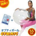 特典 DVD付き バランスボール 直径 55cm ギムニク・オプティボール