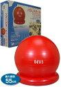 フィットネスクラブが作ったバランスボール(55cm)【税込・送料無料】
