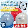 【期間限定特価】フィットネスクラブがつくったバランスボール55cmスタートパック(DVD付)【税込・送料無料】