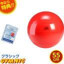 特典 DVD付き ギムニク バランスボール 直径 55cm (赤
