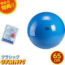 特典 DVD付き ギムニク バランスボール 直径 65cm (青