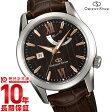 オリエントスター ORIENT WZ0301EL メンズ腕時計 時計