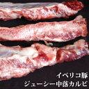 【エントリーでポイント5倍】イベリコ豚・ジューシー中落ちカルビ メガ盛り500g s