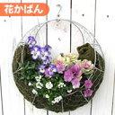 【花かばんセット】[※※FMP02-35Gかばん]丸型 ハンギング バスケット
