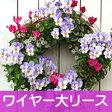 【ワイヤー大セット】◎型 ハンギング バスケット メッシュタイプ[FMP01-40G]