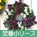 【定番小リースセット】◎型 ハンギングバスケット