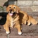 【同梱不可】犬 置物 ドッグ オーナメント ゴールデンレトリバー(11963-160)【送料計算対象外】