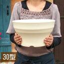 【浅型 プランター】フレグラーボウル30型 10号鉢