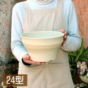 【浅型 プランター】フレグラーボウル24型 8号鉢