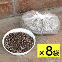 NEW!!【お得8袋セット】リース専用こぼれない土 [ハンギングバスケット専用土]5L×8個
