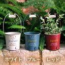 楽天楽しいガーデニング生活『なごみ』【バーゲン セール】ブリキ ボンジョルニ ロボット 鉢カバー(穴なし)
