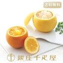 ギフト対応 商品説明 [ご注意ください] ※生のゼリーのため、常温でしばらく放置するとゼリーが溶けてしまいます。 ※お届け後は速やかに冷蔵庫へ入れてください。 デラックス(皮入れ)グレープフルーツゼリー×3(各205g)、デラックス(皮入れ)オレンジゼリー ×3(各150g) 果物の風味をそのままに・・・世代を問わない、銀座千疋屋の定番メニュー。 厳選したフルーツをまるごとくり抜き、しぼりたての果汁を、フルーツの器に注ぎ、ぷるんとした口当たりのゼリーに仕上げました。 生のフルーツとはひと味違うおいしさ、甘さを抑えさっぱりとした味わい、爽やかな柑橘の香り、ボリューム感のあるゼリーをお楽しみください。 上蓋の果汁をゼリーに絞りかけてお召し上がりください 生ものですので冷蔵庫に入れてお早目にお召し上がりください。 ●原材料: 【デラックスグレープフルーツゼリー】 グレープフルーツ、果汁、果実、砂糖、ゼラチン、リキュール、香料 【デラックスオレンジゼリー】 オレンジ、果汁、果実、砂糖、ゼラチン、レモン果汁、リキュール、クエン酸、香料 : 千疋屋 ゼリー ギフト 内祝い 敬老の日 ●数量限定のため予定数に達ししだい販売終了とさせていただきます。 ●お届け方法:ヤマト運輸クール冷蔵便 ●消費期限:出荷日より4日 ●保存方法:要冷蔵(7℃以下で保存) ※生のゼリーのため、常温でしばらく放置するとゼリーが溶けてしまいます。 ※お届け後は速やかに冷蔵庫へ入れてください。 ※冷蔵の商品ですので お届け先様のご在宅日をご確認の上、ご希望のお届け日をお選びください。 ●備考 ※商品の性質上沖縄・離島へのお届けはできません。 1)一部地域により、時間指定が承れない場合がございます。予めご了承ください。 2)ご希望日時にお届けするよう努力しておりますが、諸事情により、ご希望の日時にお届けできない場合もございます。予めご了承くださいませ。 3)他商品と同送のご注文をいただいた際には、同時にお届け出来かねますので、ご了承下さいませ。 4)手提げ袋をお付けすることはできません。 5)ギフト包装することができません。