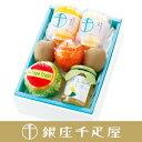 銀座千疋屋特選 果物・食料品詰合せ