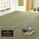 【クーポン配布中】純国産/日本製 双目織 い草上敷 『松』 本間8畳(約382×382cm)