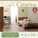 収納ベッド セミシングル【Caterina】【ポケットコイルマットレス:レギュラー付き】フレームカラ...